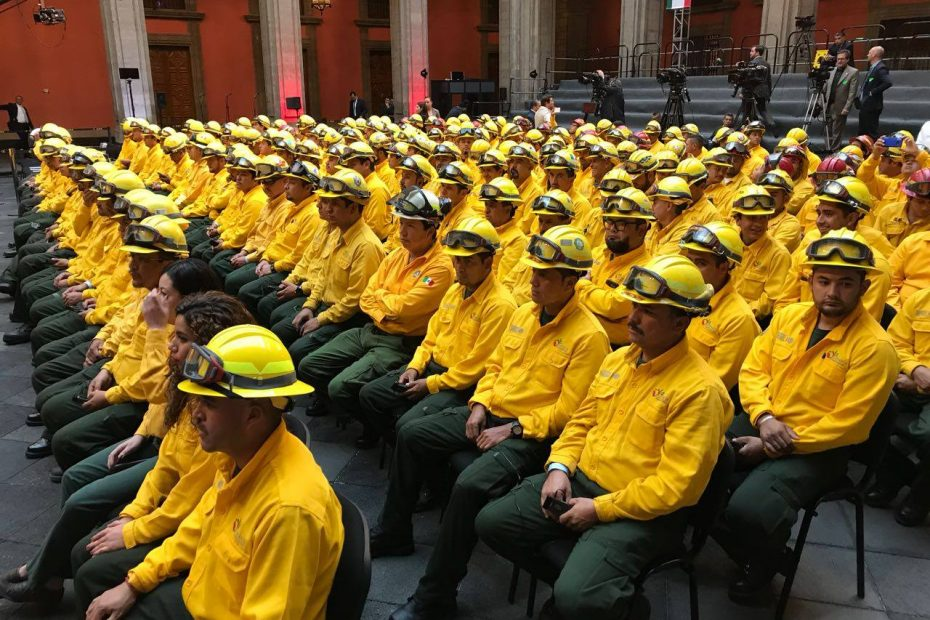 bomberos para ayudar a combatir los incendios forestales en Canadá