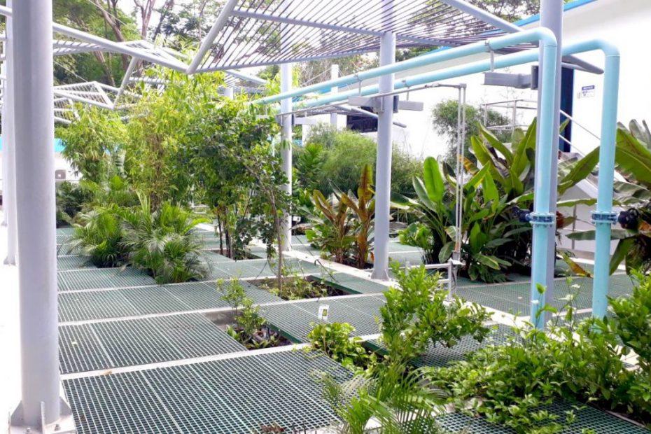 innovadora planta de tratamiento de agua