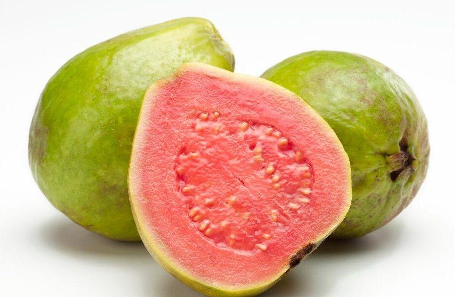 guava mexico